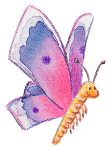 annimalt-schmetterling-anjarommerskirchen-illustration