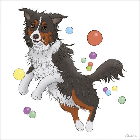 Hund Karikatur Ball Australian Shephard