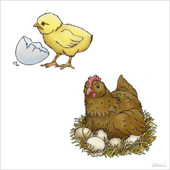 Ostern Frühling Huhn Eier Küken