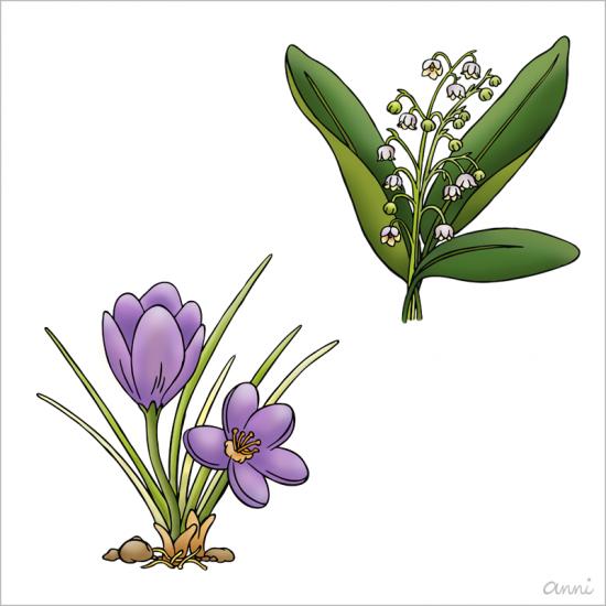 Ostern Frühling Krokus Maiglöckchen