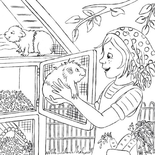 Illustrationen für Flüchtlinge Meerschweinchen