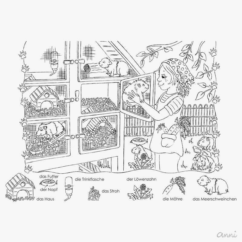 Illustrationen für Flüchtlinge Meerschweinchen GRAU